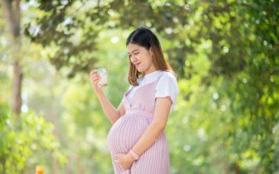 Ini Manfaat Susu Kambing Etawa Asli Bagi Ibu Hamil Muda